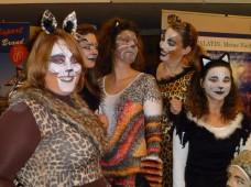 Die Katzen der UnitedDanceSchool